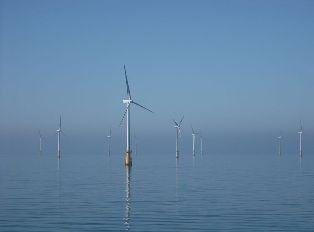 Wind farm_offshore