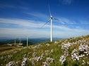 Rural Wind