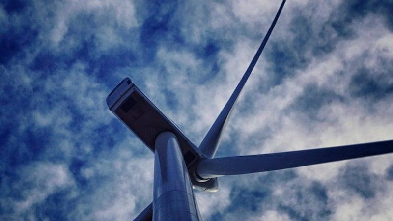 Al-Rajef wind farm