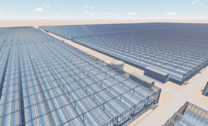 Artist impression Miraah solar thermal facility